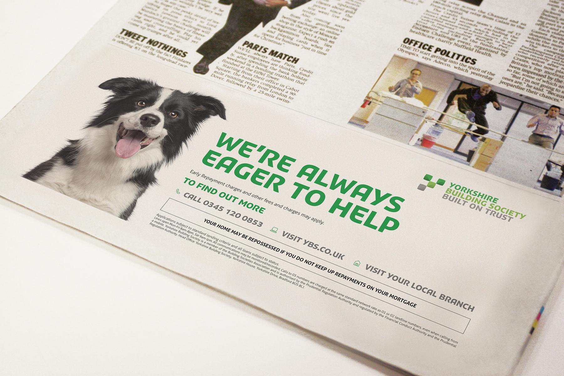 YBS Press Advertisement